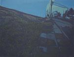 thinking of hometown _610×780mm_silkscreen_2013