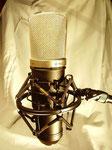 Studio-Gesangsmikrofon, Großmembran, Niere, Kondensator, 30-20000 Hz