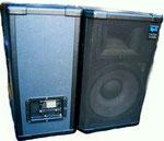 Zeck ASP 1202: 300 W RMS, max. 121 dB, Bass 12 Zoll, Hochtonhorn 1 Zoll, 8 Ohm, Abstrahlwinkel: 90 x 60 Grad, 2000 Hz Crossover, 70-18000 Hz Frequenzgang. Anschlüsse: Speakon (2x zum durchschleifen), Aufnahme für Boxenständer, zwei Schalengriffe