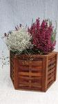 großer Blumenkasten 6-eckig, geölt für Drinnen und Draußen 39 Euro