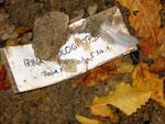 Provisorische Inschrift auf dem Grab von Irina Dolgopjata (1914-1944), Foto vom 20. September 2014: Monika Schmied