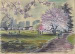 SPRING, SHINJUKU GYOEN PARK