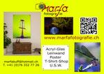 marfafotografie Kontakt