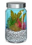 海藻サプリメント