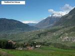 Südtirol:  Landschaft bei Meran.  Südtirol ist die Heimat von Ochsenreiter-Familien. (Foto: Ochsenreither)