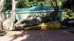 Bus vom Hurrican zerstört
