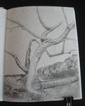 Frankfurter Grün, Zeichnungen