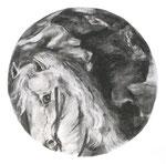 Géricault, 30 x 30 cm, fusain sur papier