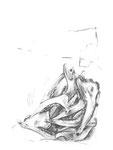 Chevreuils, fusain sur papier, 30 x  40 cm