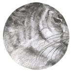 Dürer, 30 x 30 cm, fusain sur papier