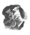 Ecureuils-zombies, fusain sur papier, 30 x 40 cm