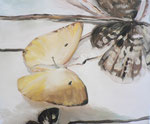Les papillons, 38 x 46 cm, huile sur tole