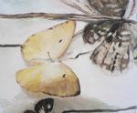 Les papillons, 38 x 46 cm, huile sur toile, 2012