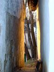 Blick zwischen zwei Preßhäusern Richtung Kellergasse.