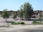 Stillgelegter Braunkohle-Tagebau bei Lauchhammer.