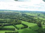 die grünen hohen Hecken sind ein Windschutz für die Kiwiplantagen
