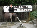 Kiwi-House. Obwohl schon geschlossen war, holte uns die Angestellte ins Kiwihouse und wir durften das Nationaltier Neuseelands bestaunen.