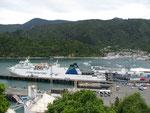 Picton - Hafen der Südinsel