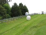 Attraktion im Agrodome: Zorb - in einem Ball den Berg herunterrollen