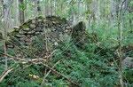 Hanisch Hegewald Ruine Mai 2012
