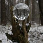 Fantasie & Wirklichkeit Fotografien und Gedichte Kathrin Steiger Kugel Glaskugel Schnee  Wald