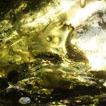 Fantasie & Wirklichkeit Fotografien und Gedichte Kathrin Steiger Magisch & geheimnisvoll grün glitzer