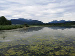 Chiemsee bei Bernau