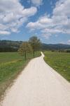... dieser Weg....