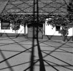 Schatten 1 (3)