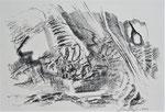 Naturstücke - Frottagen 2011 (2) Graphit auf Papier, 42x29,5cm