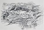 Naturstücke - Frottagen 2011 (4) Graphit auf Papier, 42x29,5cm