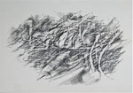 Naturstücke - Frottagen 2011 (5) Graphit auf Papier, 42x29,5cm
