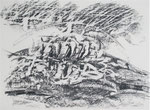 Naturstücke - Frottagen 2011 (1) Graphit auf Papier, 42x29,5cm