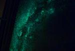 Vois lactée phosphorescente
