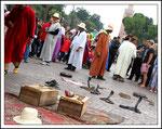 Charmeurs de serpents sur place Jemaa el-Fna