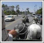 La promenade en calêche , moment très agréable au bruit des fers à cheval