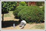 un employé de la ville pendant sa sieste du midi