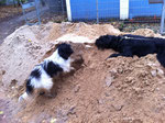 Vor dem Minigolf-Platz war mit einem Mal ein Sandhaufen, auf dem man super spielen konnte.