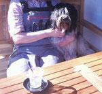 Der erste Kaffee in diesem Jahr, den wir auf der Terrasse eingenommen haben. Ich bekomme natürlich keinen Kaffee sondern ein Leckerli.
