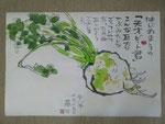 ビート(甜菜)(巻紙)