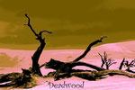 Deadwood(ナミビア・ナミブ砂漠)