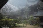 HWV-AM01「御夢 -吉水神社-」奈良県-2020年撮影-