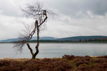 Landschaft auf dem Ettelsberg