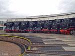 Lokparade im historischen Bahnbetriebswerk Arnstadt: 41 1144, 01 1531, 44 0093, 50 3688, 65 1049, 38 1182, 94 1292 und 91 6580 (22. Februar 2014).