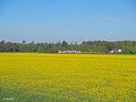 Dieser Itino hat am 16.04.2014 bereits einige Kilometer aus der Rhein-Main-Metropole Frankfurt hinter sich. In den Feldern bei Hainburg ist von der morgendlichen Hektik der Großstadt nichts zu erahnen (VIA 25257).