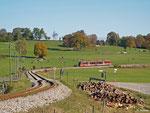 Aus Reutte kommt 642 716 als RB 5512. Der Bahnübergang führt direkt in die kleine Ortschaft Wertach-Haslach; 18. Oktober 2013.
