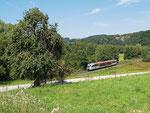 Ländliche Idylle pur! Ein Desiro der Hessischen Landesbahn ist am 14.08.2012 auf der Linie der Kahlgrundbahn unterwegs als HLB 24682 von Kahl am Main nach Schöllkrippen. Soeben hat er Mensengesäß verlassen und rollt weiter gen Schimborn.