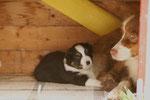 Cannelle et son fils Brooklyn dans leur petite maison