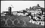 Assisi panorama con ulivi