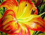 Hemerocallis Christmas (acrilico) 100 x 80 - 2012